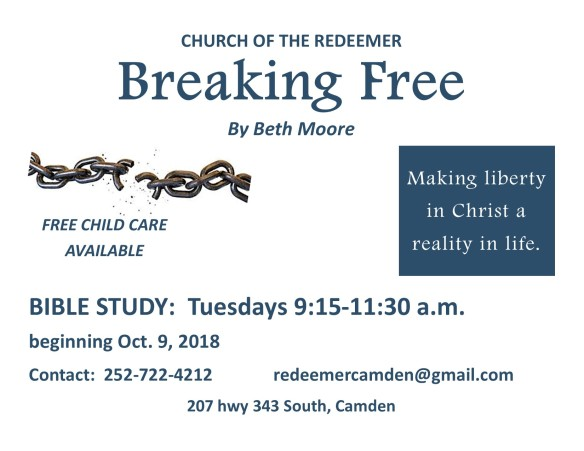 breaking free flyer